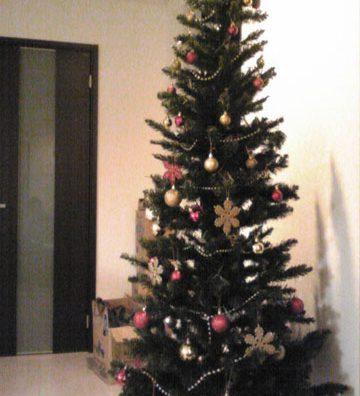 クリスマスツリーを初設置。