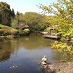 柏の葉公園(日本庭園)