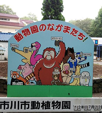 市川市動植物園に行ってきた。