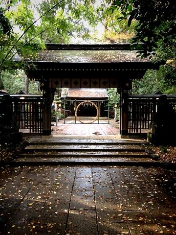 雨上がりの神々しい諏訪大社