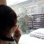 大雪にびっくり
