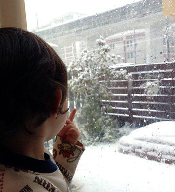 「爆弾低気圧」初雪は大雪になりました。