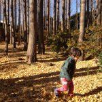 「シャトーカミヤ」庭園散歩