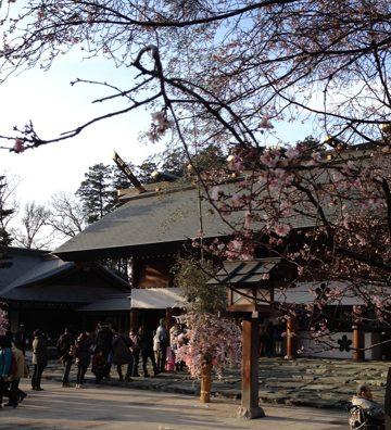 初詣第二弾、野田市の「櫻木神社」に行ってきた。