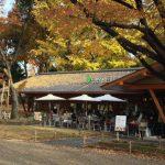 上野の森パークサイドカフェ