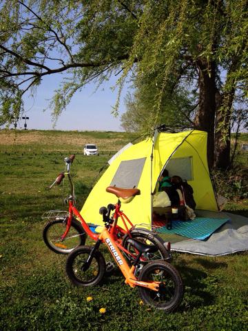 利根川ゆうゆう公園デイキャンプ