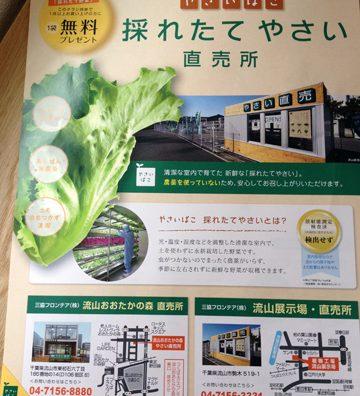 次世代の野菜直売所!?流山おおたかの森の採れたて野菜直売所。