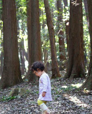 「手賀の丘公園」で自然を満喫!