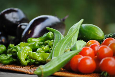 「えか自然農園」で環境教育の体験授業と食育体験イベント開催!