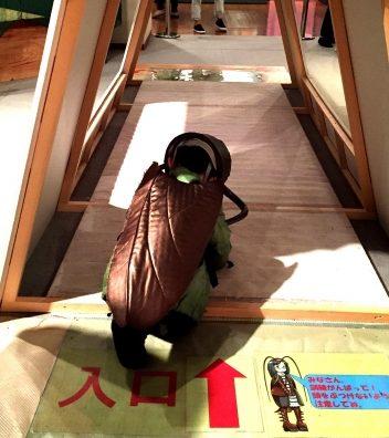 「ミュージアムパーク 茨城県自然博物館」でG体験!