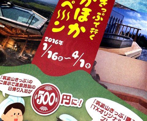 漫遊茨城!2月末は「筑波山」で温泉・花見・夜景を満喫しよう。