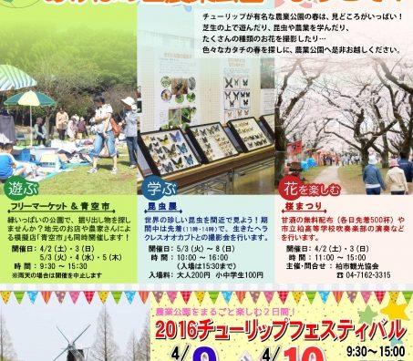 あけぼの山農業公園で「2016チューリップフェスティバル」開催。