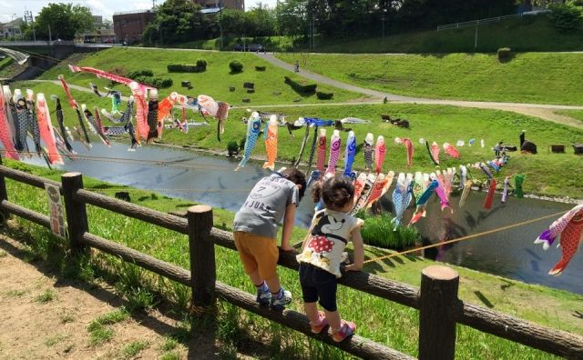 利根運河の青空群泳。「うんがいい!こいのぼり」開催。