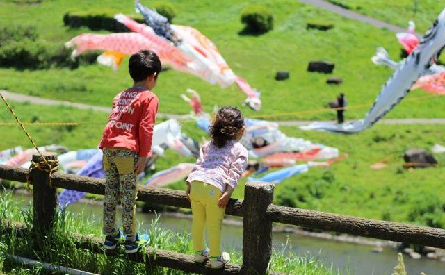 利根運河水辺公園の「鯉のぼり」に向かってK点超え?