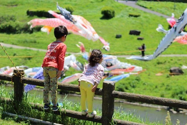 利根運河水辺公園鯉のぼり