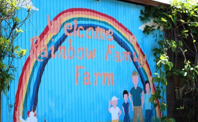 こどもの日は流山の「レインボーファミリー農園」で枝豆種まき体験。
