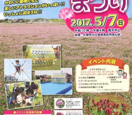 一面ピンク色のレンゲ畑「第6回坂東レンゲまつり」が開催。
