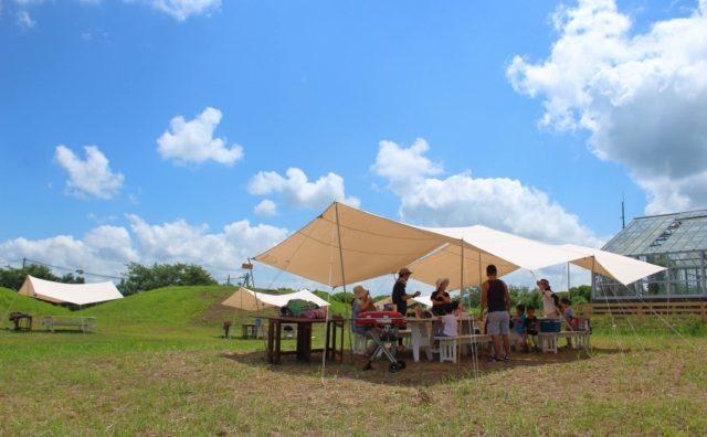「奥手賀ツーリズム」の収穫体験&BBQツアーがぞくぞく募集中。