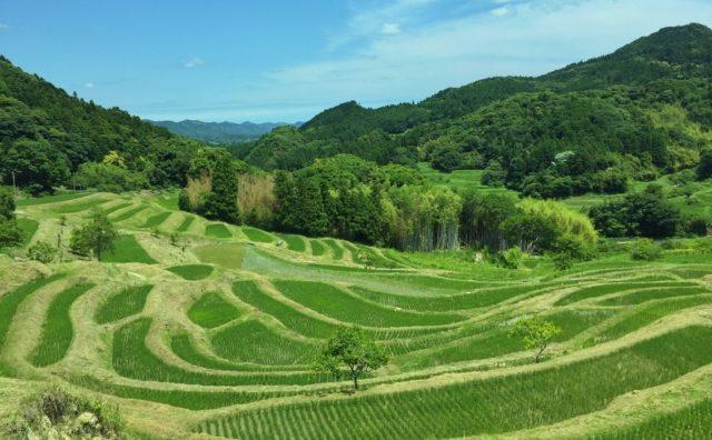 千葉の隠れ人気スポット「濃溝の滝」「大山千枚田」に、おやじ旅。