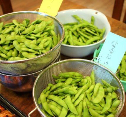 手賀の丘農業体験「農菜土」で、枝豆収穫体験。