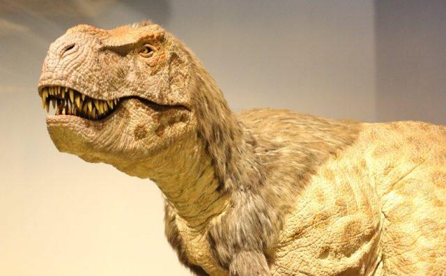流山おおたかの森に全長約5.5mのヤングティラノサウルス出現。