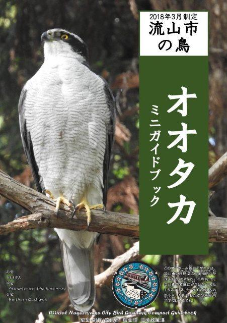 流山市の鳥