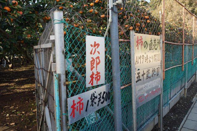 五十嵐柿園