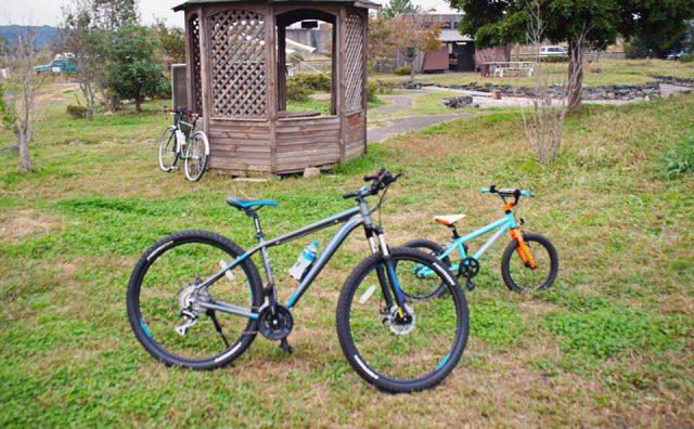 手賀沼サイクリングロードをポタリング。