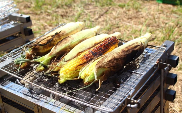 初夏の季節は農菜土で農業体験!