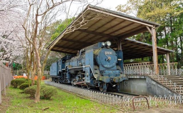栄光の機関車 流山市総合運動公園の「デゴイチ」を改修。