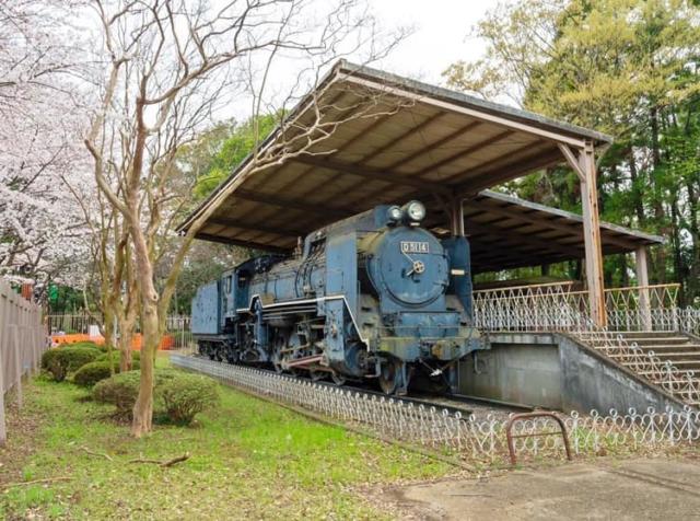 流山総合運動公園機関車