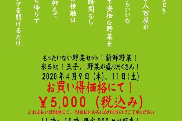 野田市で開催「ドライブスルー八百屋」で新鮮お野菜ゲット!