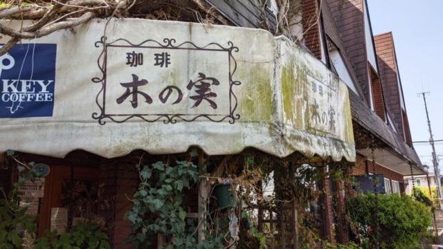 珈琲木の実